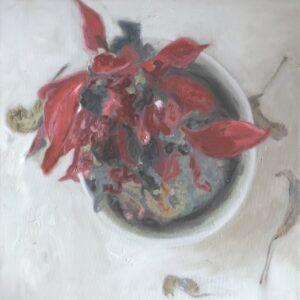 Poinsettia, 60x60, oil on canvas, 2019